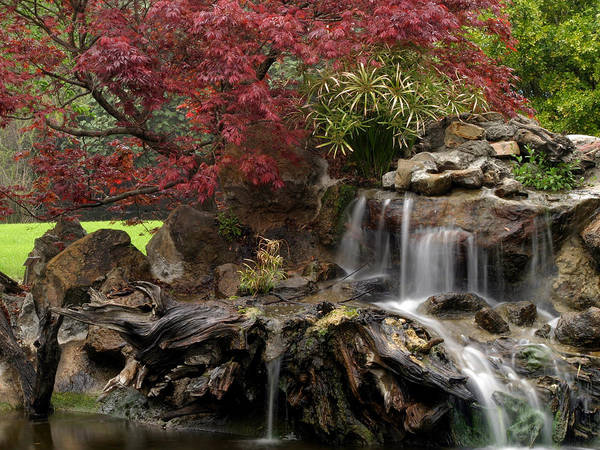 Cascading Poster featuring the photograph Cascading Waterfall by Doug Dailey