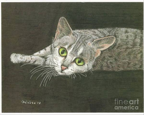 Cat Poster featuring the drawing Cat On Black by Bill Hubbard