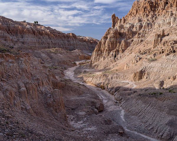 Cathedral Gorge Poster featuring the photograph Cathedral Gorge Wash by Greg Nyquist