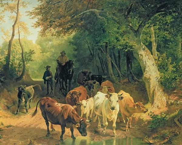 Cattle Poster featuring the painting Cattle Watering In A Wooded Landscape by Friedrich Johann Voltz