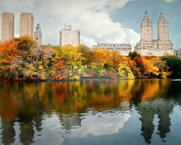 Landscape Poster featuring the photograph Central Park #1 by Diana Angstadt