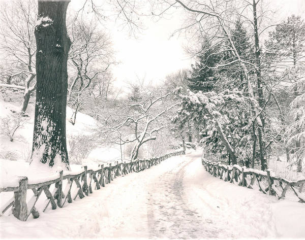 Nyc Poster featuring the photograph Central Park Winter Landscape by Vivienne Gucwa