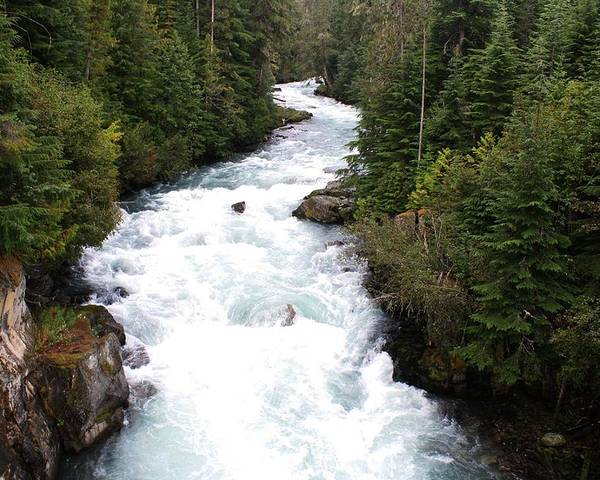 River Poster featuring the photograph Cheakamus Lake Source - Whistler by Amanda Holmes Tzafrir