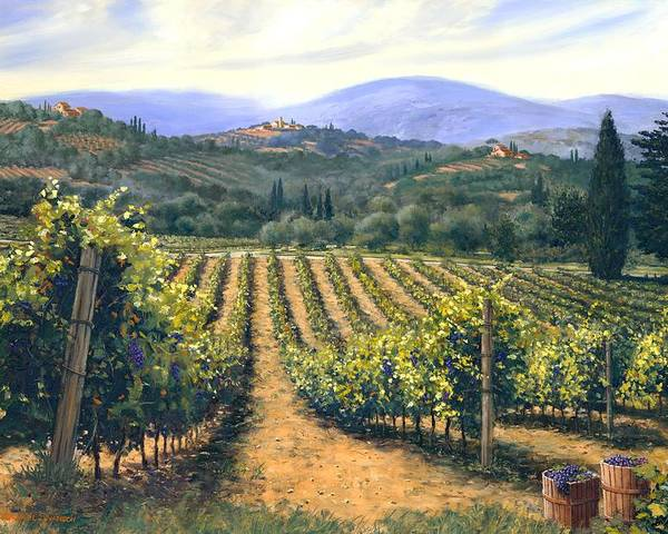 Chianti Vines Poster featuring the painting Chianti Vines by Michael Swanson