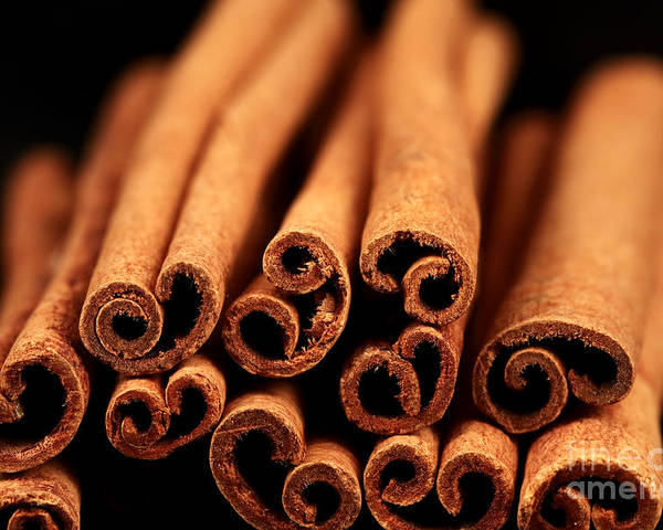Cinnamon Sticks Poster featuring the photograph Cinnamon Sticks by John Rizzuto