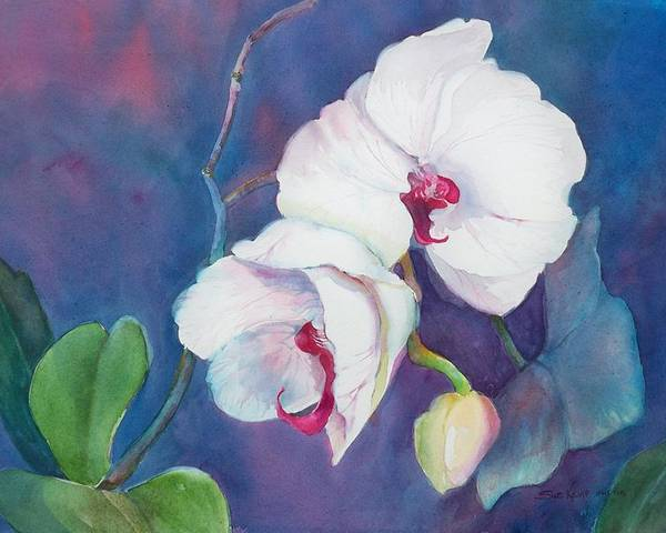 Orchid Painting Poster featuring the painting Circle Of Life by Sue Kemp