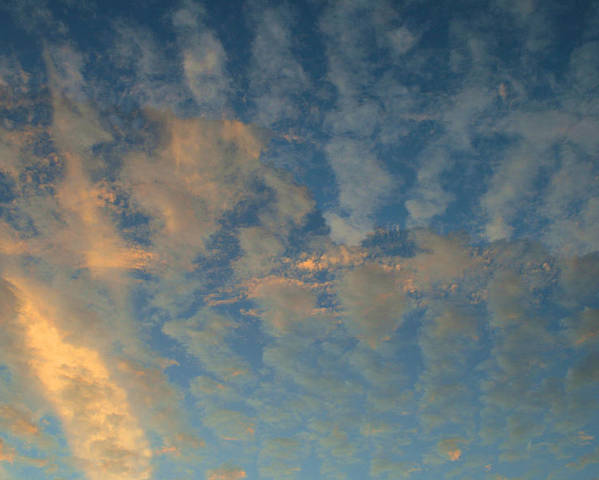 Cirrocumulus Morning Poster featuring the photograph Cirrocumulus Morning by Ellen Henneke