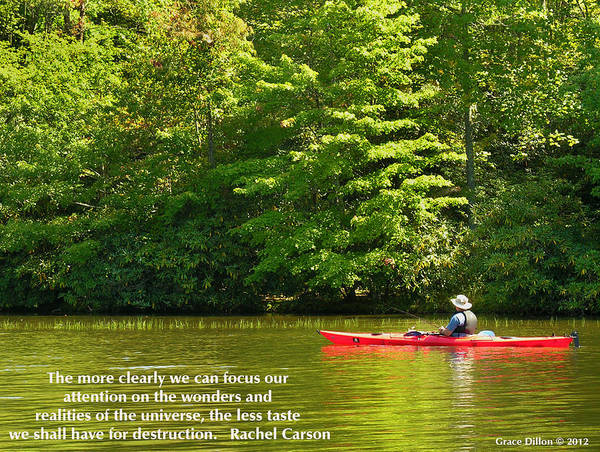 Canoe Poster featuring the photograph Clearly Focus by Grace Dillon