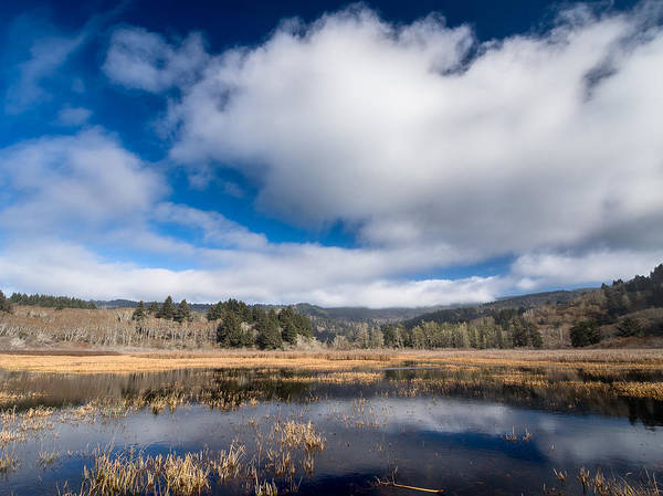 Reflections Poster featuring the photograph Cloud Above Dry Lagoon by Greg Nyquist