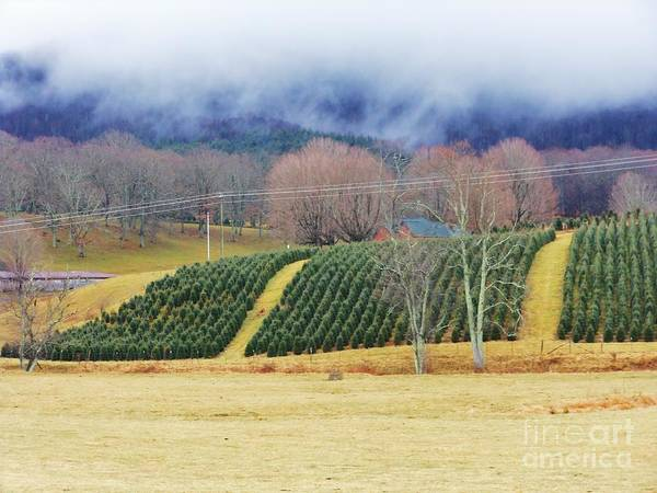 Mountains Poster featuring the photograph Clouds Meet Mountain by Beebe Barksdale-Bruner