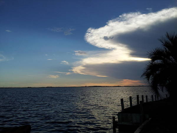 Gulf Palm Trees Clouds Sunset Poster featuring the photograph Cloudy Sunset by Ray Valverde