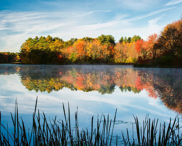 Grist Millpond Poster featuring the photograph Color On Grist Millpond by Michael Blanchette