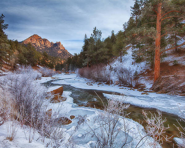 Winter Poster featuring the photograph Colorado Creek by Darren White