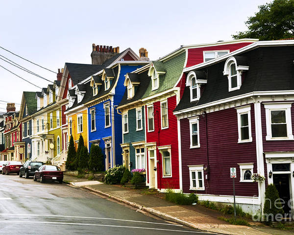 Street Poster featuring the photograph Colorful Houses In Newfoundland by Elena Elisseeva