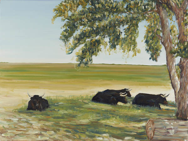 Oxen Poster featuring the painting Commanche National Grasslands La Junta Colorado by David Llanos