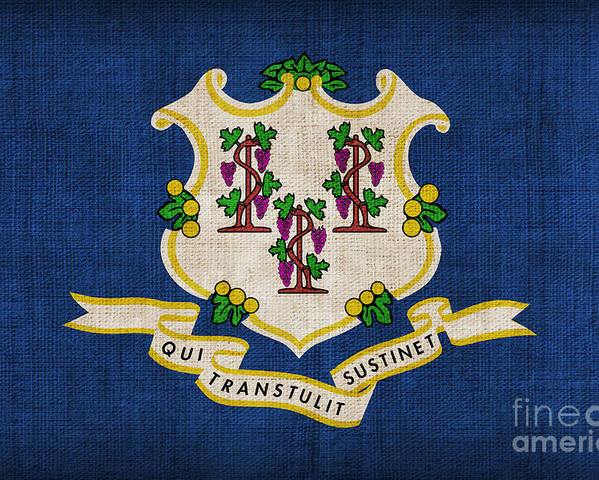 Connecticut Poster featuring the painting Connecticut State Flag by Pixel Chimp