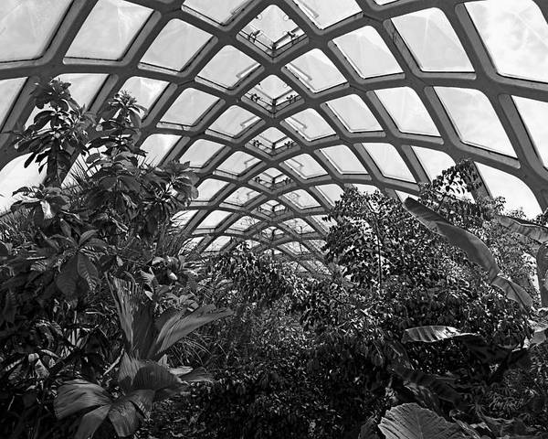 Conservatory Poster featuring the photograph Conservatory Denver Botanic Garden Black And White by Ann Powell