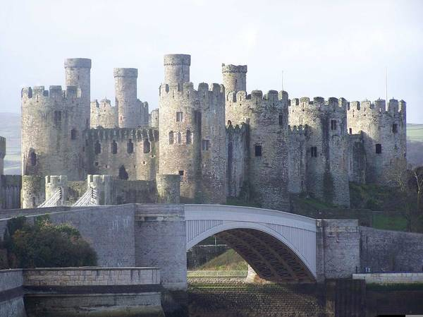 Castles Poster featuring the photograph Conwy Castle by Christopher Rowlands