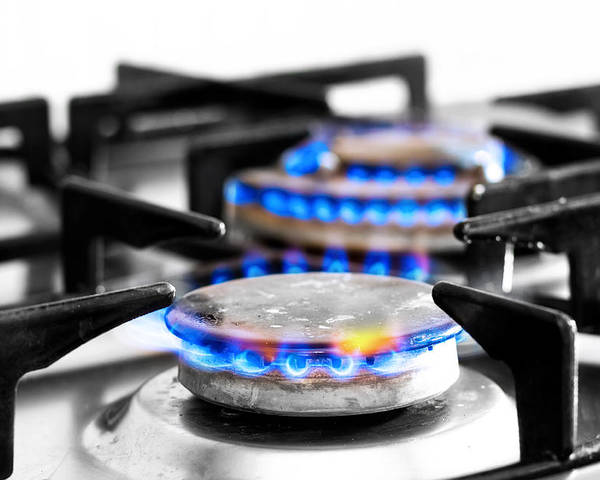 Appliance Poster featuring the photograph Cooker Gas Hob With Flames Burning by Fizzy Image