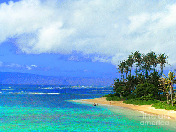 Hawaii Iphone Cases Poster featuring the photograph Cooling Off Hawaiian Style by James Temple