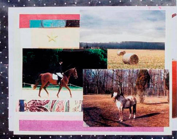 Horse Poster featuring the mixed media Country Collage 6 by Mary Ann Leitch