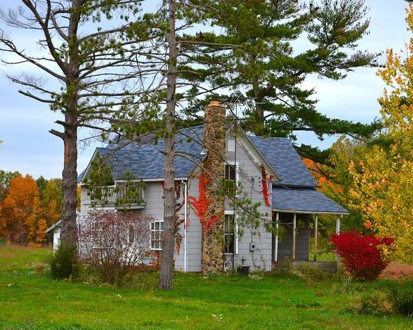 Country Cottage Poster featuring the photograph Country Cottage by Julie Dant