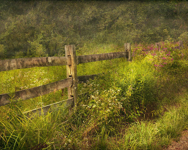 Country Poster featuring the photograph Country - Fence - County Border by Mike Savad