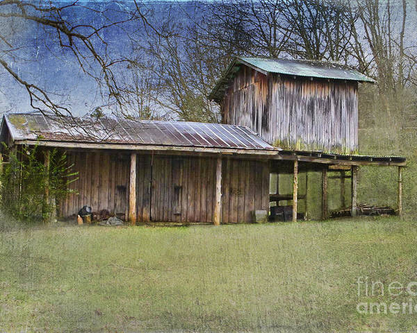 Wooden Barn Poster featuring the photograph Country Life by Betty LaRue