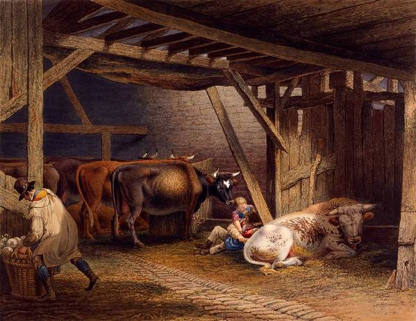 Cow Poster featuring the drawing Cow Shed by Robert Hills