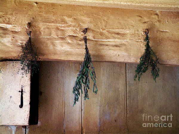 Herbs Poster featuring the painting Crossbeam With Herbs Drying by RC DeWinter