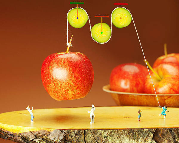 Cucumber Pulley Moving Apples Food Physics Poster
