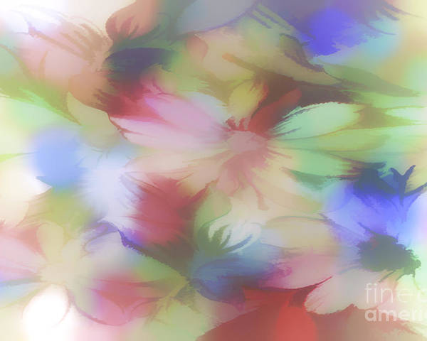 Flora Poster featuring the photograph Daisy Floral Abstract by Tom York Images
