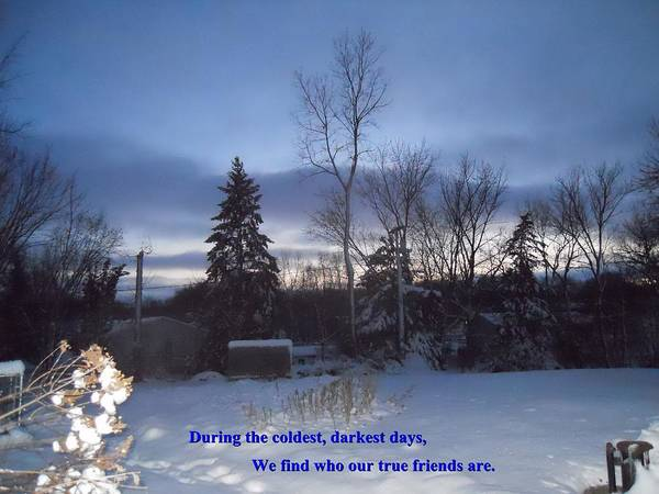 Quotes Poster featuring the photograph Dark Days And Friendship by Coleen Harty