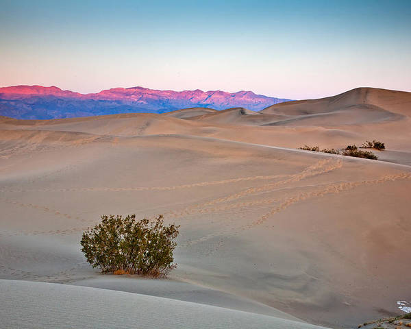 Mesquite Flats Dunes Poster featuring the photograph Dawn Dunes by Peter Tellone