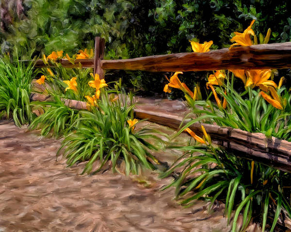 Flowers Poster featuring the painting Day Lilies by Michael Pickett