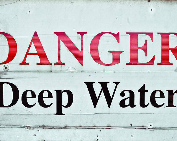 Aquatic Poster featuring the photograph Deep Water by Tom Gowanlock