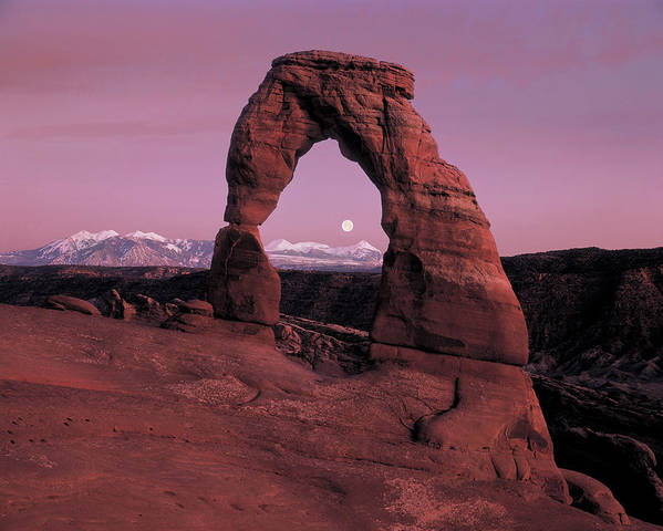 Delicate Arch Poster featuring the photograph Delicate Arch by Leland D Howard