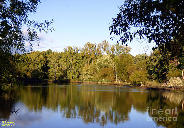 Waterscape Poster featuring the photograph Delta Lake Reflections by Rennae Christman