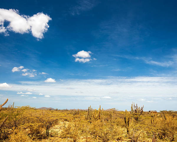 Desert Poster featuring the photograph Desert Landscape With Deep Blue Sky by Jess Kraft