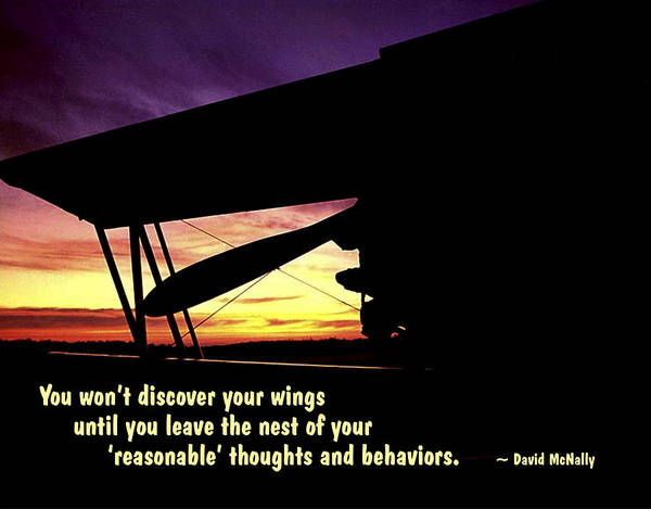 Quotation Poster featuring the photograph Discover Your Wings by Mike Flynn