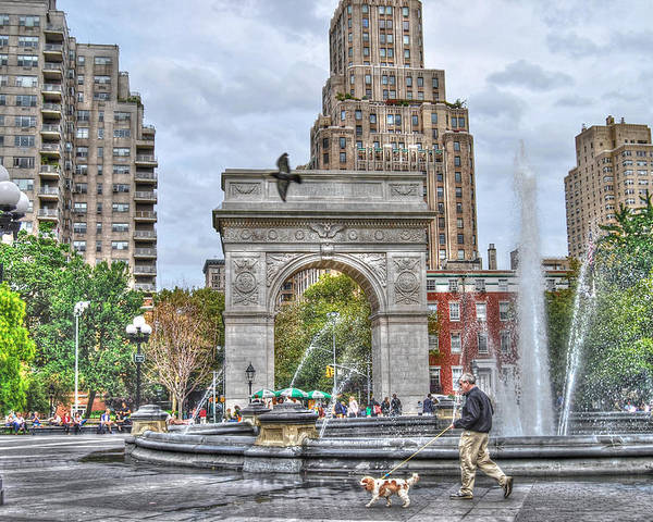Washington Square Park Poster featuring the photograph Dog Walking At Washington Square Park by Randy Aveille