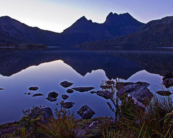 Lakes Poster featuring the photograph Dove At Dawn by Tony Crehan