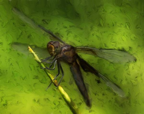Macro Poster featuring the painting Dragonfly Macro by Jack Zulli
