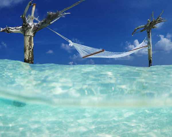 Tropical Poster featuring the photograph Dream Hammock. by Sean Davey