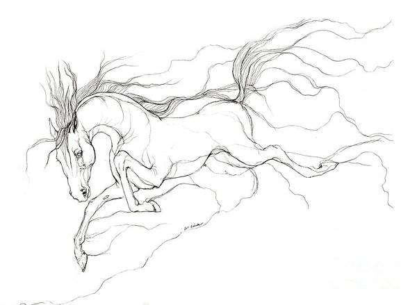 Horse Poster featuring the drawing Dream Horse by Angel Tarantella