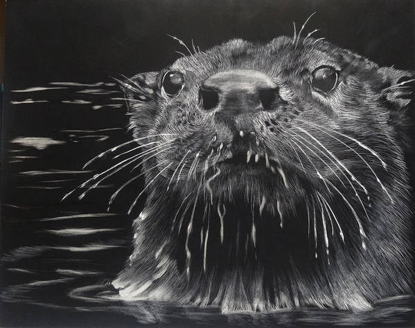 Otters Poster featuring the painting Drippy by Sydne Spencer