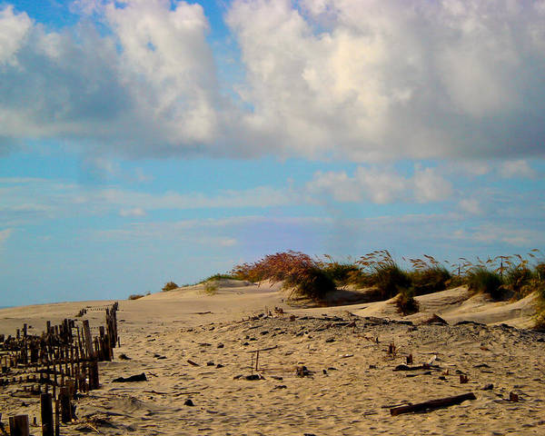 Outer Banks Poster featuring the photograph Dunes At Obx by Donna Shaw