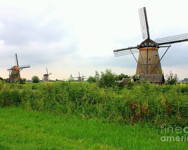 Holland Poster featuring the photograph Dutch Landscape With Windmills by Carol Groenen