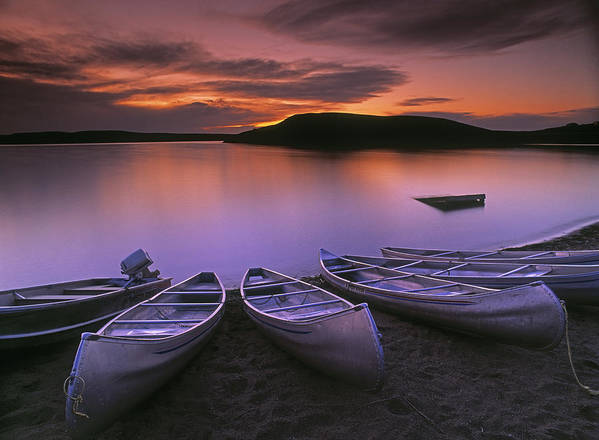Calming Poster featuring the photograph D.wiggett Canoes On Shore, Pink And by First Light