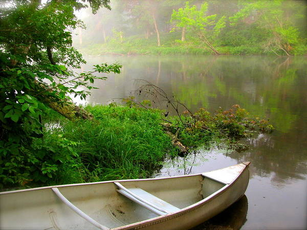 Canoe Poster featuring the photograph Early Morning Paddle by Jody Partin